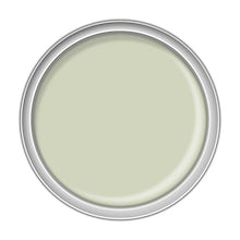 Elderflower Cordial Paint