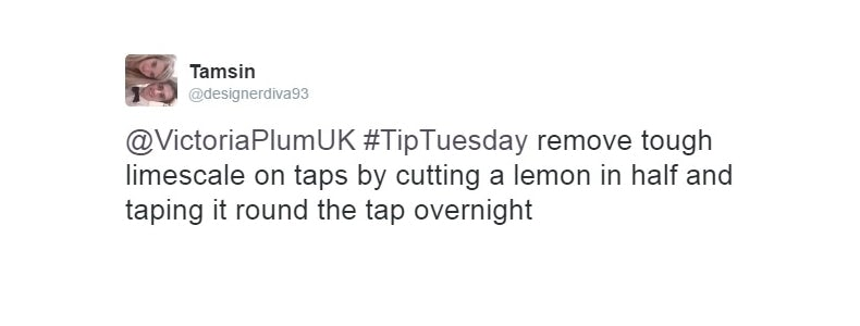 Lemons cleaning tip 2