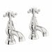 The Bath Co. Coniston bath pillar taps