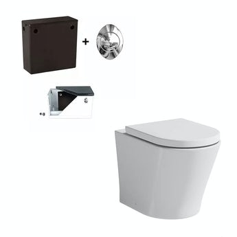 Mode Arte back to wall toilet with soft close toilet seat and concealed cistern