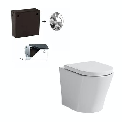 Tate Back To Wall Toilet Inc Seat and Concealed Cistern