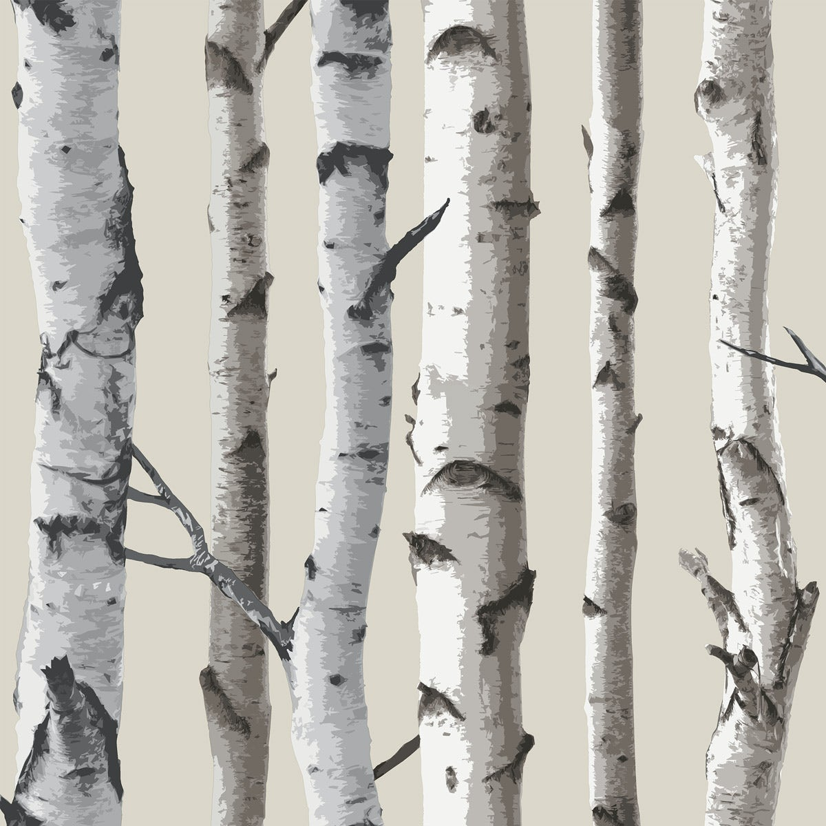 Birch Tree Sidewall - Natural