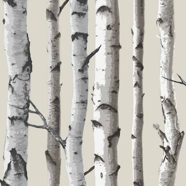 Birch Tree Sidewall - Natural