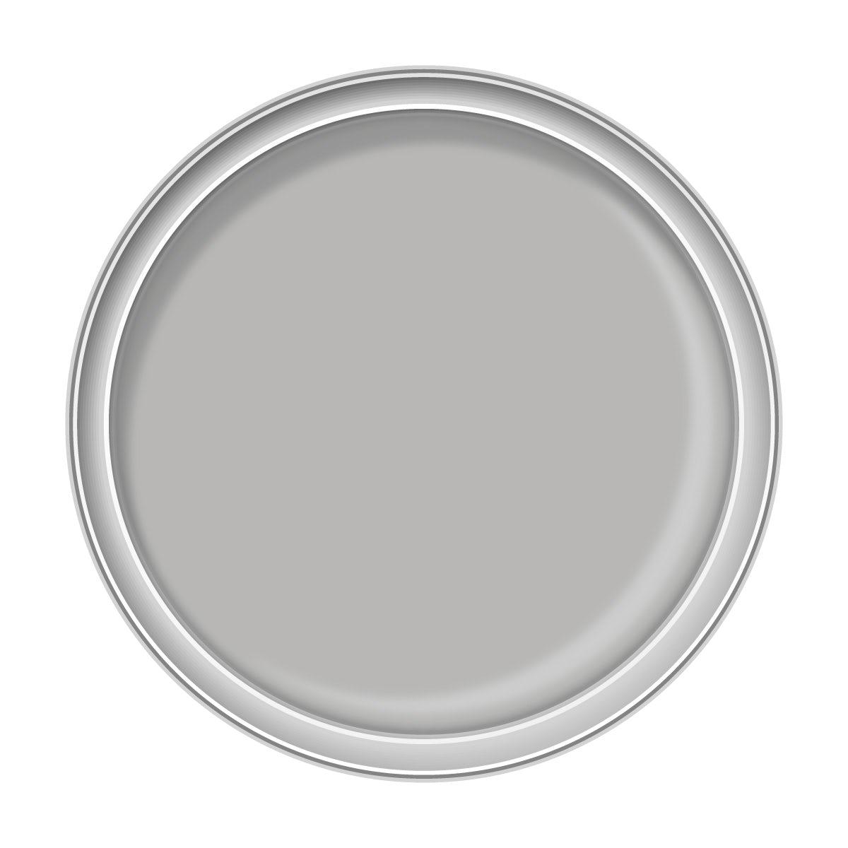 Craig & Rose ammonite kitchen & bathroom paint 2.5L