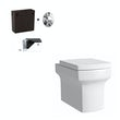 Vermont back to wall toilet inc concealed cistern